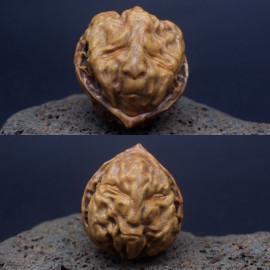 Резная кость (манчжурский орех)