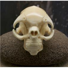 Нэцке Homo praedatorius